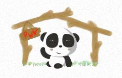 Pwn Panda